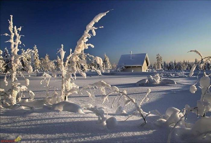 zima-33